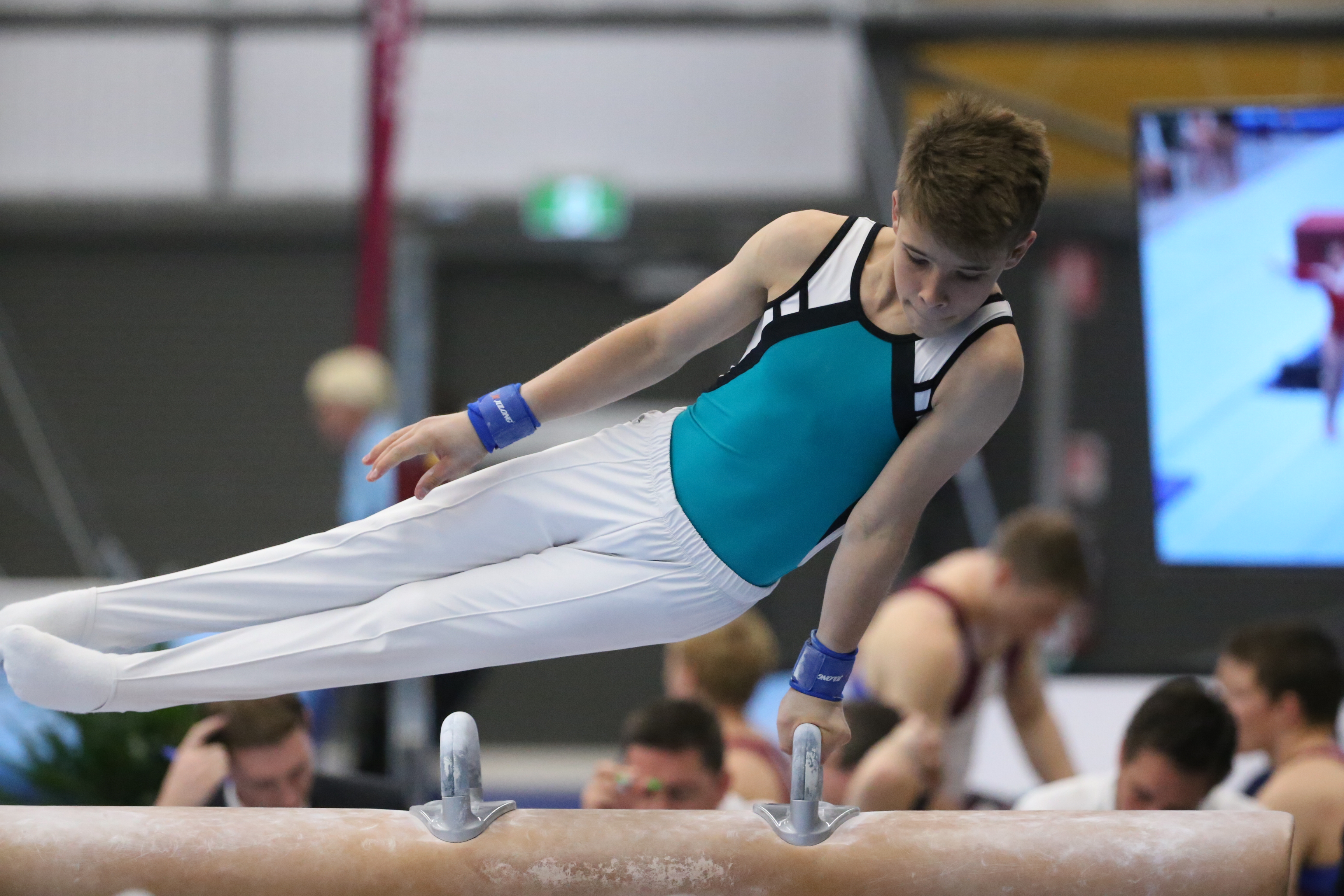 What are the categories in gymnastics